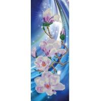 Орхидея1