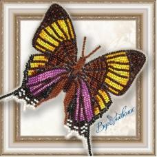 Набор магнит- бабочка для вышивки бисером «Марпезия Марселла».