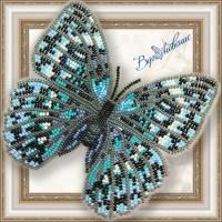 Набор магнит- бабочка для вышивки бисером «Стихтофальма Годфри».