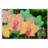 """Схема для вышивки бисером """"Орхидея великолепная"""" (Схема или набор)"""