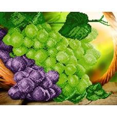 Дары Солнца ( виноград)