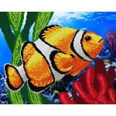 Коралловая рыбка (набор или схема)