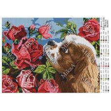 """Схема для вышивки бисером """"Розы и щенок"""" (Схема или набор)"""