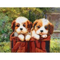 Маленькие щенки (схема или набор для вышивки бисером)
