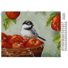 """Схема для вышивки бисером """"На яблоках"""" (Схема или набор)"""