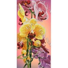 Орхидея Панно