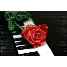 Рояль и Роза